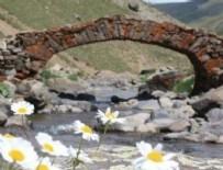 BILAL DOĞAN - Gümüşhaneliler 300 yıllık köprüyü arıyor