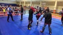 SLOVAKYA - Kick Boks Milli Takımı'nda Avrupa Şampiyonası Hazırlıkları