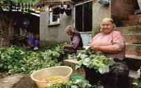 ÇİFTÇİLER GÜNÜ - Kadın Çiftçilere Destek