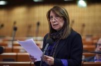 AKKUYU NÜKLEER SANTRALİ - Türk Parlamenterden AKPM'ne Sert Tepki