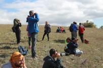 ÇAMLıCA - 216 Farklı Kuş Türü Gözlemlendi, 30 Bin 607 Adet Kuş Sayıldı