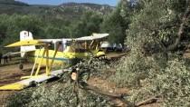 TEKNİK ARIZA - Balıkesir'de Zeytin İlaçlama Uçağı Sert İniş Yaptı
