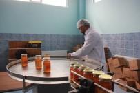 MEHMET CAN - Bingöl Balı, 9 Sene Sonra Dolum Ve Paketleme Tesisine Kavuştu