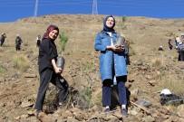 Erzincan'da Gençlerin Eliyle 4 Bin Fidan Toprakla Buluştu