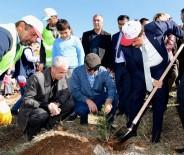 EROZYONLA MÜCADELE - Kahramanmaraş'ta 'Senin De Bir Dikili Ağacın Olsun' Kampanyası