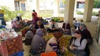 GENÇ KADIN - Kısır Gününde Ortaya Çıkan Fikir Mahallenin Kadınlarını İş Sahibi Yaptı