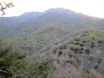 Kozluk Kırsalında Tespit Edilen EYP İmha Edildi