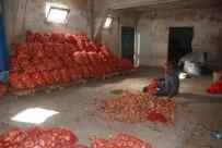 Soğan Depolarda Çürümeye Başladı, Fiyat Artışı Bekleniyor