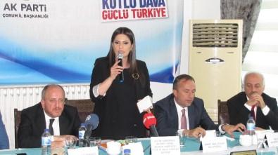 AK Parti'li Sarıeroğlu Çorum'da STK Temsilcileriyle Biraraya Geldi