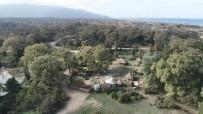 ŞAHAN GÖKBAKAR - Karacabey Longoz'unda Sonbahar Güzelliği
