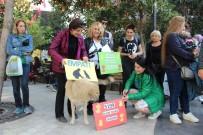 SOKAK HAYVANLARI - Hayvanseverlerden Yeni Yasa Tasarısına Tepki