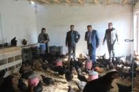 Iğdır'da Kanatlı İşletme Sayısı Artıyor