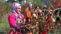 KÖPRÜLÜ - Kaymakam Ayca, Çukurcalı Çiftçiyi Ziyaret Etti