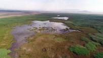 Akşehir Gölü Kurumaktan Kurtulacak