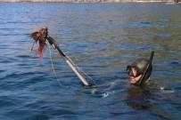 LAGOS - Antalya'da Zıpkıncılar, İşgalci Ve Zehirli 'Aslan Balığı' İçin Daldı