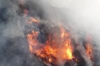Başkale'de 5 Bin Bağ Ot Yandı