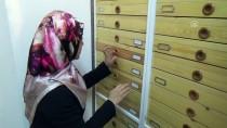 BULDUK - Böcek Müzesi'ne Yeni Türler Kazandırılıyor