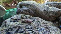 Çanakkale'de Kaçak Avcılıkla Mücadele