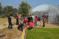 ARAŞTIRMA MERKEZİ - 'Çim Uygulama Ve Araştırma Merkezi' Ege Üniversitesi'nde Kuruldu