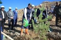 ALİ HAMZA PEHLİVAN - 'Fidanlar, Fidanlarla Büyüyecek' Projesi İle 150 Bin Fidan Toprakla Buluştu