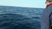 GÜNCELLEME 4 - Dikili'de Düzensiz Göçmenleri Taşıyan Tekne Battı Açıklaması 5 Ölü