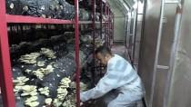 19 MAYIS ÜNİVERSİTESİ - Hibe Desteğiyle Aylık 5 Bin Lira Gelirli İş Kurdu