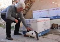 Köylülerden Örnek Davranış 'Kediler İçin Ev'
