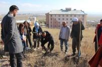 KYK'lı Öğrenciler Bin Fidanı Toprakla Buluşturdu