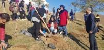 EROZYON - Solhan'da Öğrenciler Fidan Dikti