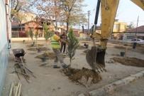 Turgutlu'da Okul Bahçeleri Yeşillendiriliyor