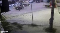 Balıkesir'de At Arabalı Hırsızlar Güvenlik Kamerasında