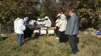 Çaycuma'da 14 Kursiyer Arıcılık Kursunu Tamamladı