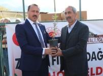 Elazığ'da 30 Üreticiye, Zeytin Fidanı Hibe Edildi
