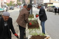 Hizan Belediyesinden Refüj Ve Peyzaj Çalışmaları