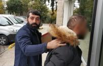 SIGARA - Samsun'da Kaçak Tütünle Yakalanan Şahsa Adli Kontrol