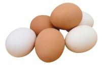 Tavuk Yumurtası Üretimi Azaldı