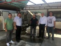 KATKI MADDESİ - Yalova'ya Termal Su İle Gıda Kurutma Tesisi Kurulacak