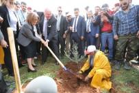 KUŞBURNU - Gaziantep 3 Milyon Metrekarelik Alana Orman Kurdu