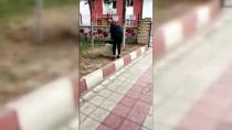 ATATÜRK LİSESİ - Lise Öğrencisi Üşüyen Kediye Hırkasını Sardı