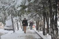 Bayburt'ta Kar Yağışı Olumsuzluklara Neden Oldu
