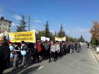 ANADOLU LİSESİ - Beyşehir'de  Dünya Diyabet Günü Farkındalık Yürüyüşü
