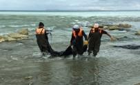 ÇİMENTO FABRİKASI - Duyarlı Vatandaşın İhbarı, Van Gölü'nü Kurtardı