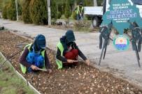 GÖKKUŞAĞI - Gölbaşı'nda 100 Bin Lale Soğanı Toprakla Buluştu