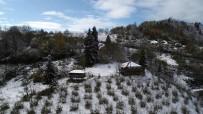 Kar Yağışı Yerini Güneşli Havaya Bıraktı