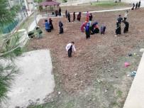 Okul Bahçesine Ekilen Buğday, Yoksullara Aş Olacak
