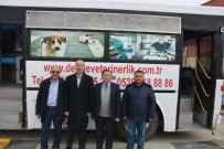 SOKAK HAYVANLARI - Şuhut'ta Sokak Hayvanları Rehabilite İşlemlerinden Geçiriliyor
