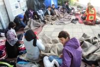 SINIR DIŞI - Ayvalık'ta 13 Afganistan Uyruklu Göçmen Yakalandı