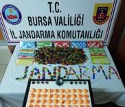 Bursa'da Düğün Salonuna Kumar Baskını Açıklaması 42 Gözaltı