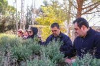 BEDENSEL ENGELLİ - Engelli Vatandaşlar, Hobi Bahçelerini Çok Sevdi