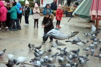 SOKAK HAYVANLARI - Minik Kalpler Sokak Hayvanları İçin Atıyor
